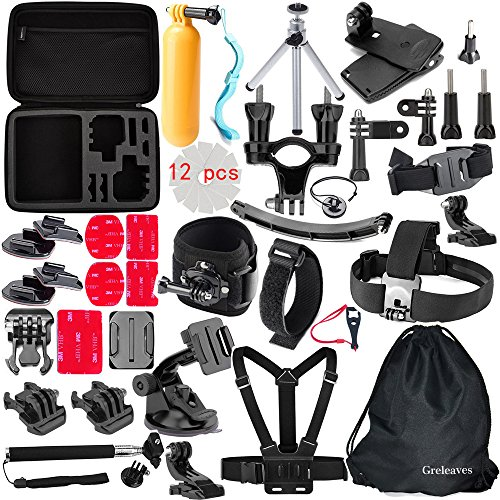 Greleaves-50-in-1-Accessories-Bundles-Kit-with-Case-for-Gopro-Hero-4-SessionGopro-Hero-4-Black-Gopro-Hero-4-SilverGopro-Hero-43321-Camera-Accessory-Kit-for-SJ4000-SJ5000-SJ6000