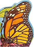 img - for Butterfly (Metamorphoses) book / textbook / text book