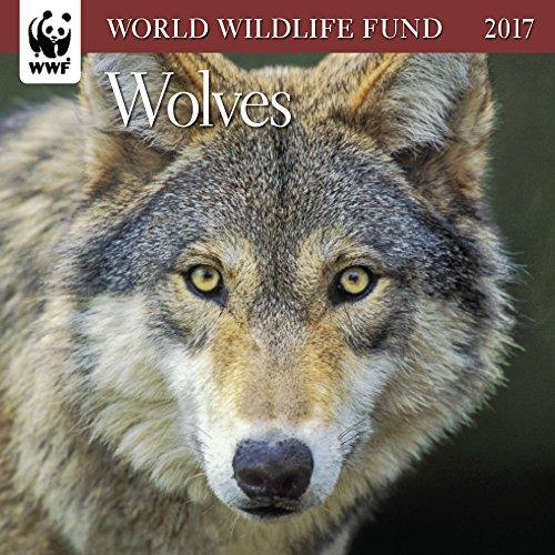 Wolves WWF Mini Wall Calendar 2017