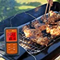 ThermoPro Digital Probe Oven & Roasting Thermometer with Timer for BBQ / Grill / Meat / Kitchen Food Cooking