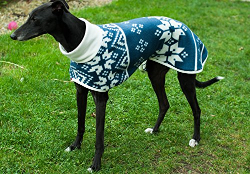 designed-house-coat-for-whippet-greyhound-by-dogandhome-26-28-or-28-30