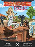 Fondue Frolic: Cozy Murder Mystery (Culinary Cozy) (Function Frenzy Murder Mystery Series Book 5)
