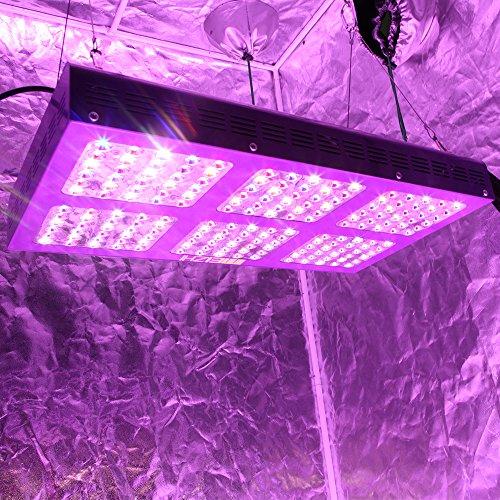 Meizhi Led Grow Light 900w Full Spectrum For Indoor Plants