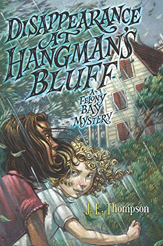 Disappearance at Hangman's Bluff (Felony Bay Mystery)