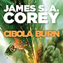 Cibola Burn: Book 4 of the Expanse Audiobook by James S. A. Corey Narrated by Erik Davies
