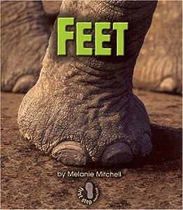 Feet (First Step Nonfiction) Melanie Mitchell