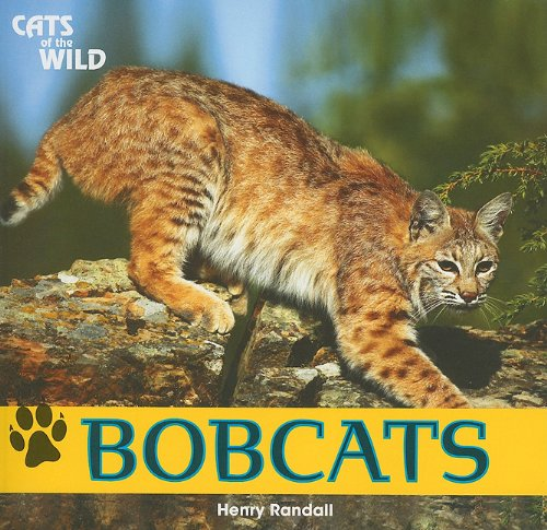 Bobcats (Cats of the Wild (Paperback))