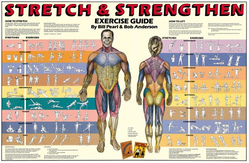Stretch and Strengthen Laminated Poster (Stretching Chart compare prices)