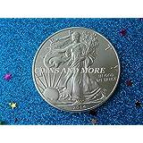 2014 1 oz American Silver Eagle .999 Fine Silver 1 oz American Silver Eagle .999 Fine Silver Dollar US Mint Uncirculated
