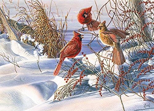 Cobble Hill Birds of a Feather Jigsaw Puzzle, 1000-Piece
