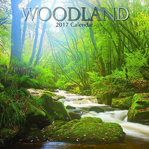 woodland-16-month-2017-wall-calendar