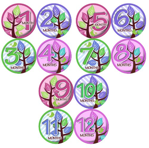 Monthly Onesie Sticker Set of 12 - GIRLS TREES PURPLE GREEN PINK Baby Month Onesie Stickers Baby Shower Gift Photo Shower Stickers, baby shower gift by OnesieStickers - 1