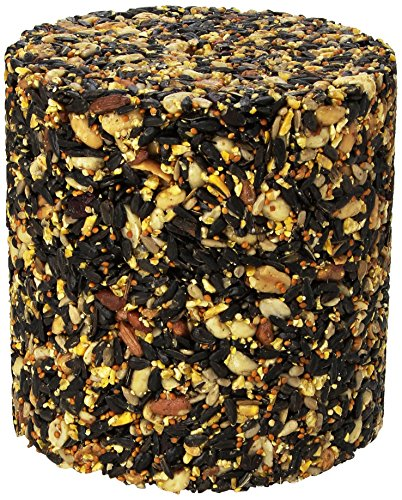 pine-tree-8006-fruit-berry-nut-classic-seed-log-72-ounce