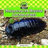 Madagascar Hissing Cockroaches (Unique Pets)