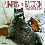 2017 Pumpkin the Raccoon Wall Calendar
