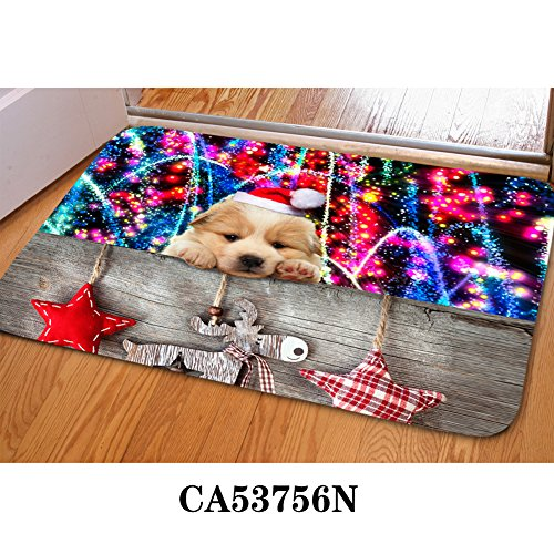 HUGSIDEA Cute Golden Retriever Pattern Soft Flannel Indoor House Doormat Floor Mat Rug Holiday Christmas Decor
