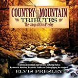 Country Mountain Tributes: Songs of Elvis Presley Craig Duncan