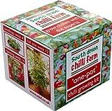 One-Pot Chilli Growing Kit