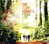 Feels Like A New Morning (2CD) [from UK]