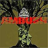 Maroons: Ambush [Vinyl]