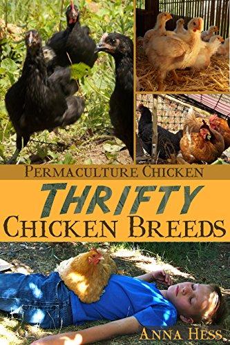 Thrifty Chicken Breeds by Anna Hess ebook deal