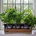 Indoor Herb Garden Kit - by Viridescent - Wooden Windowsill Planter Box for the Kitchen. Includes All You Need to Grow Your Own Herbs. Perfect Gift Idea!