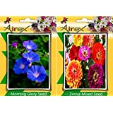 Airex Morning Glory & Zinnia Mixed Flower Seeds ( Pack Of 25 Seeds Per Packet)