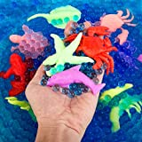 PROLOSO Water Growing Sea Creatures Animals & Water Beads Set | 30Pack + 10000Pcs | Expandable Oceanic Animals Fun in The Bathtub | Educational & Learning Toy Toddlers Children Boys & Girls Gift