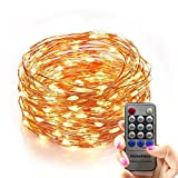 Homestarry® Outdoor String Lights,Dimmable LED Starry String lights Perfect for Bedroom,Garden,Party,Indoor and Outdoor Decorations (100LEDs 33ft,Cooper Wire,WarmWhite ,Remote Control)