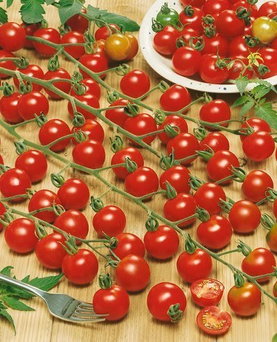 Supersweet 100 Hybrid Tomato Seeds - Lycopersicon Esculentum - 0.1 Grams - Approx 60 Gardening Seeds - Vegetable Garden Seed