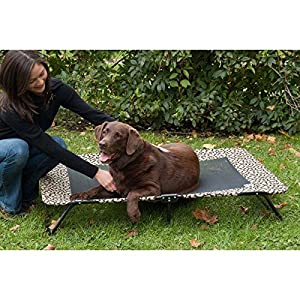 Pet Gear Designer Cot for Cats and Dogs up to 100 pounds, 30-inches, Tan Bone