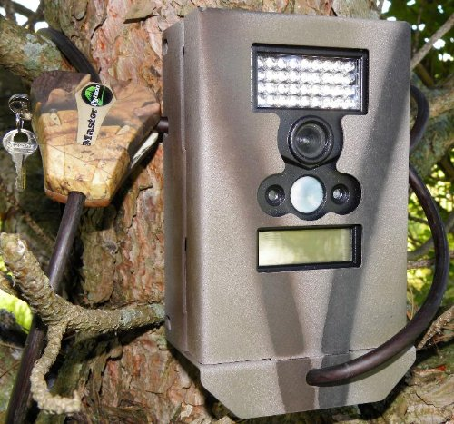 Best Trail Cameras (Reviews of 2019 + All You Need To Know)