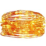 Solar Christmas String Lights,easyDecor Copper Wire 100 LED 33ft Warm White Waterproof Decorative Starry Fairy Rope Light for Thanksgiving,Outdoor,Indoor,Party,Patio,Garden,Holiday,Wedding,Xmas Tree