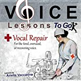 Voice Lessons to Go: Vocal Repair