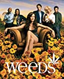 Weeds Poster TV 27 x 40 In - 69cm x 102cm Mary-Louise Parker Elizabeth Perkins Hunter Parrish Alexander Gould Kevin Nealon Justin Kirk