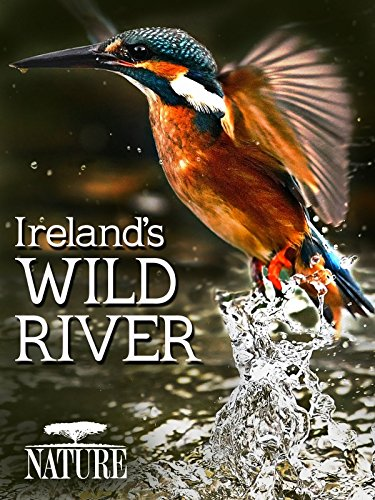 Ireland's Wild River