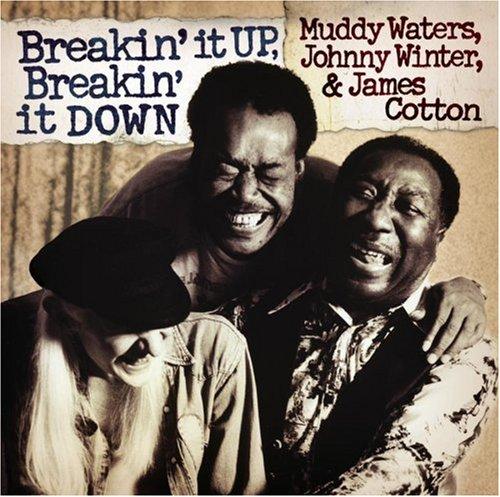 Muddy Waters - Breakin
