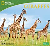 2014 National Geographic Giraffes Deluxe Wall