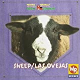 img - for Sheep/ Las Ovejas: Animals That Live On the Farm = Animales Que Viven En La Granja book / textbook / text book