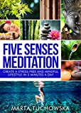 Meditation: Five Senses Meditation: Create a Stress-Free and Mindful Lifestyle in Five Minutes a Day (Spiritual Coaching for Modern People Book 2)