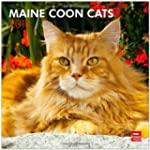 Maine Coon Cats 2013 Square 12X12 Wal...