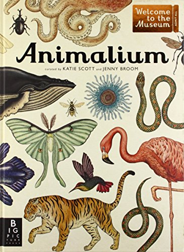 Animalium: Welcome to the Museum