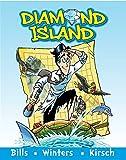 img - for Diamond Island book / textbook / text book