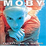 Everything is Wrongpar Moby