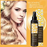 PEDISON BEAUTE Argan Oil and Perfume Hair Mist 4.7oz (Blooming) [K-Beauty] Nourishing, Hydrating, Protecting Hair Mist with Long Lasting Scent
