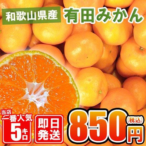 和歌山県産【有田みかん】約5kg/紀州/訳あり
