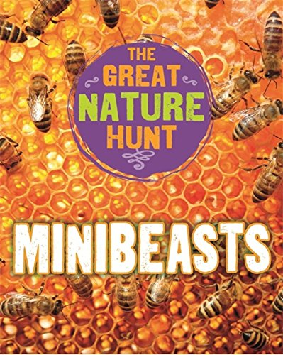 The Great Nature Hunt: Minibeasts