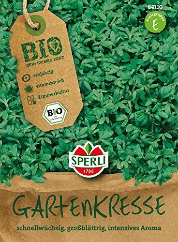 Kresse - Bio-Kresse Bio-Saatgut von Sperli-Samen