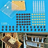 Katoot@ Beekeeping Cupkit Queen Rearing Box 110x Brown Cell Cups System Cupularve Tools Bee Keeper Tools Apiculture Supplier