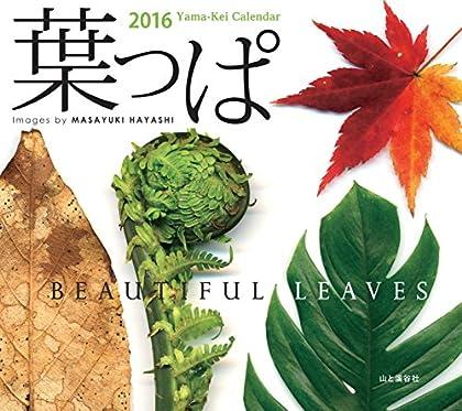 カレンダー2016 葉っぱ beautiful leaves (ヤマケイカレンダー2016)